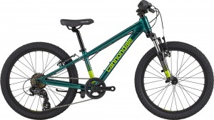 "Cannondale TRAIL 20"" Boys 2021"